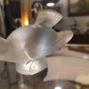 moineau lalique